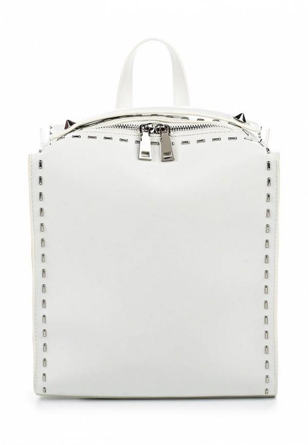 Городской рюкзак Vitacci (Витачи) BD0283