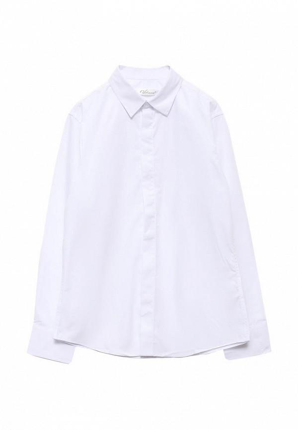 Рубашка Vitacci (Витачи) 1163018-01