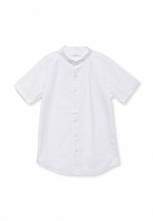 Рубашка Vitacci 1163028-01