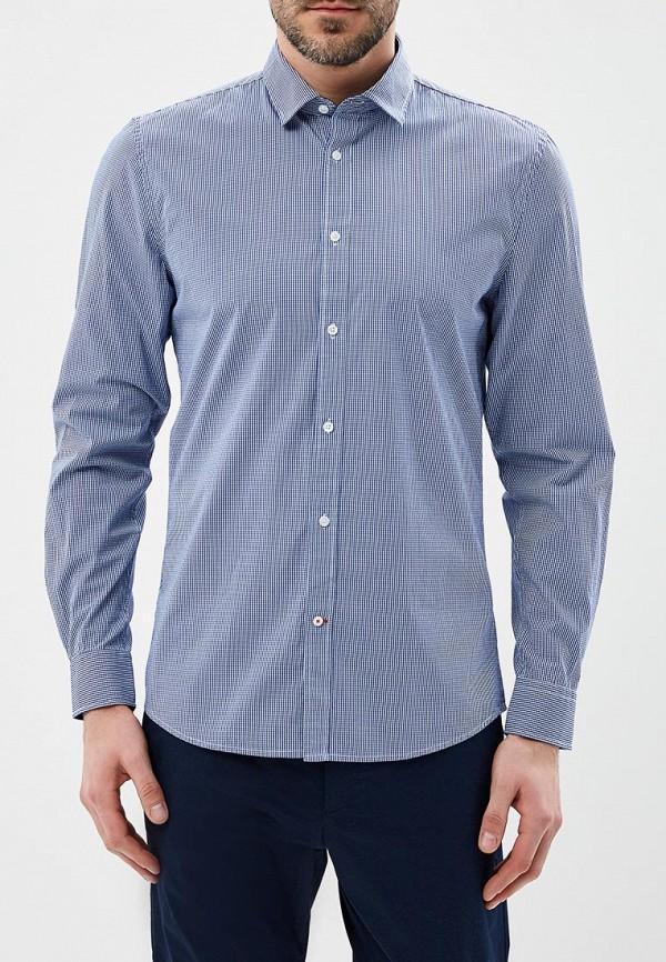 Рубашка Warren Webber Warren Webber WA010EMBAUZ8 рубашка warren webber warren webber wa010emxfr63