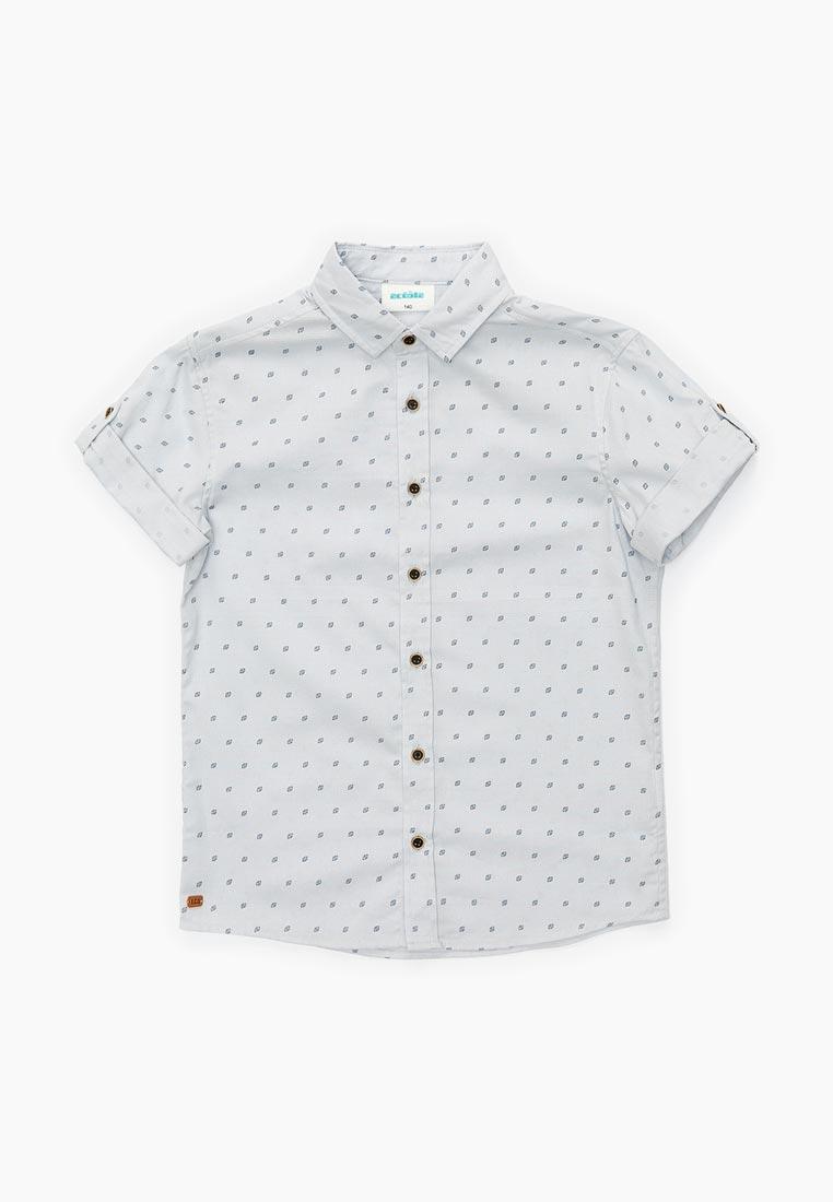 Рубашка Acoola 20110290029