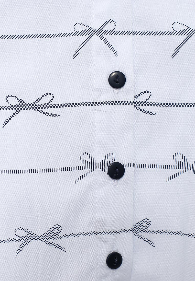 Блуза Acoola 20210260009: изображение 6