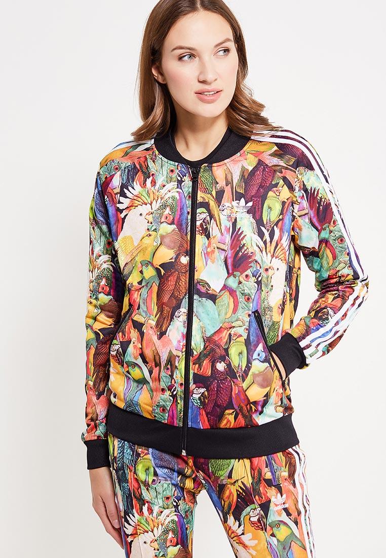 Олимпийка Adidas Originals (Адидас Ориджиналс) BR5155