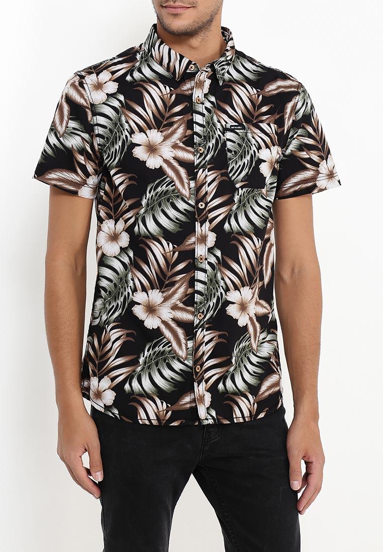 Рубашка Animal CL7SL137