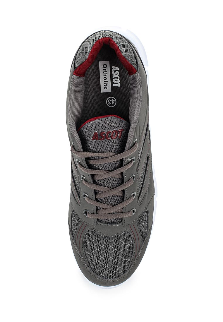 Мужские кроссовки Ascot (Аскот) SJ 553M THUNDER: изображение 4