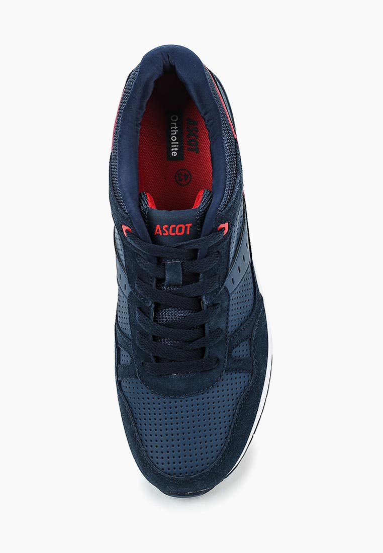 Мужские кроссовки Ascot (Аскот) SJ 3099-03 ZEON: изображение 4