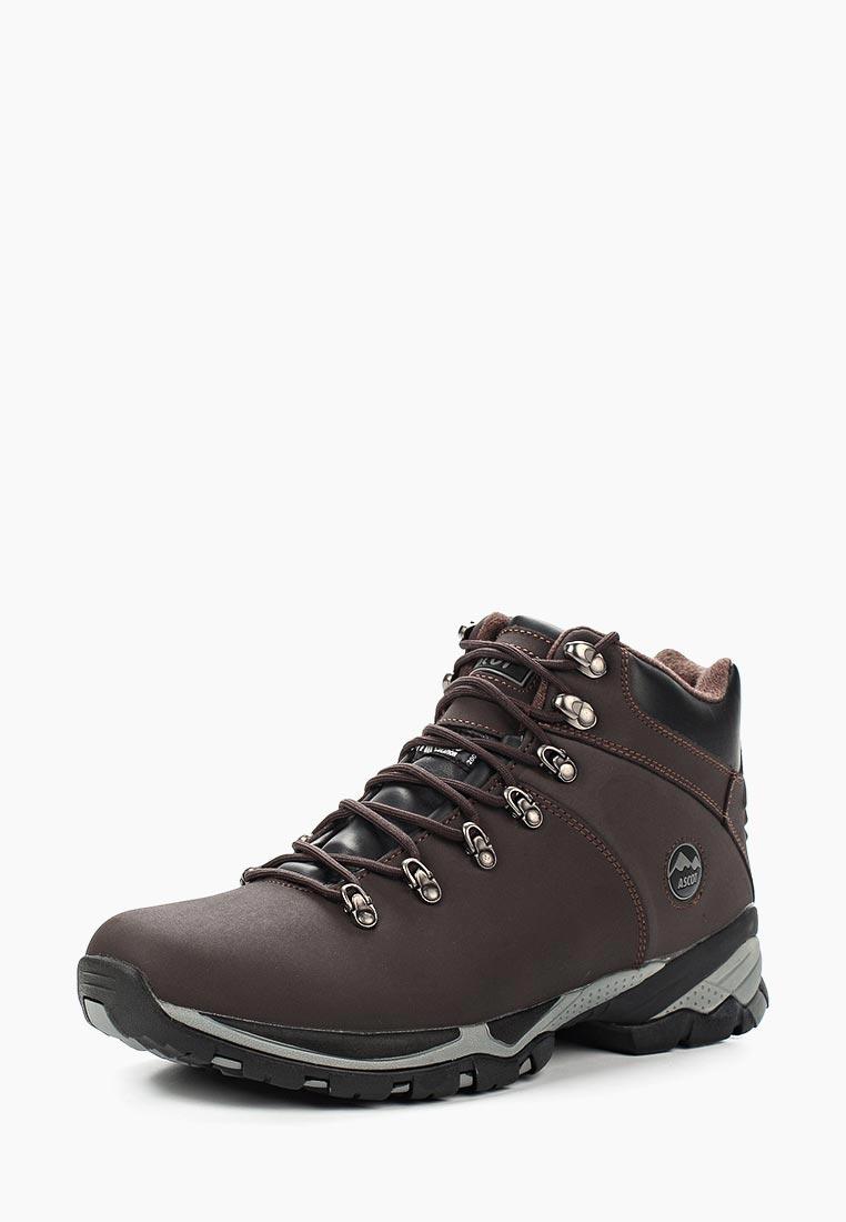 Спортивные мужские ботинки Ascot (Аскот) TN879 005 MONTARA: изображение 1