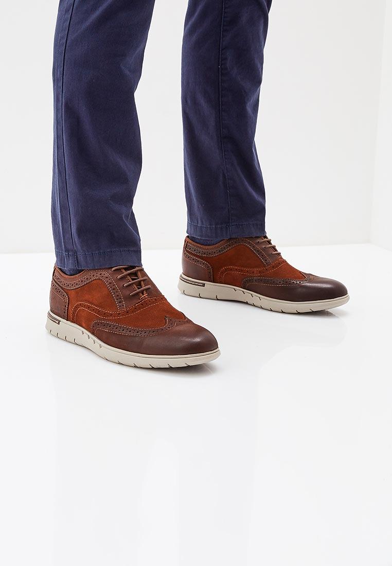 Мужские туфли AZOR ZM 3784 BERGAMO: изображение 5