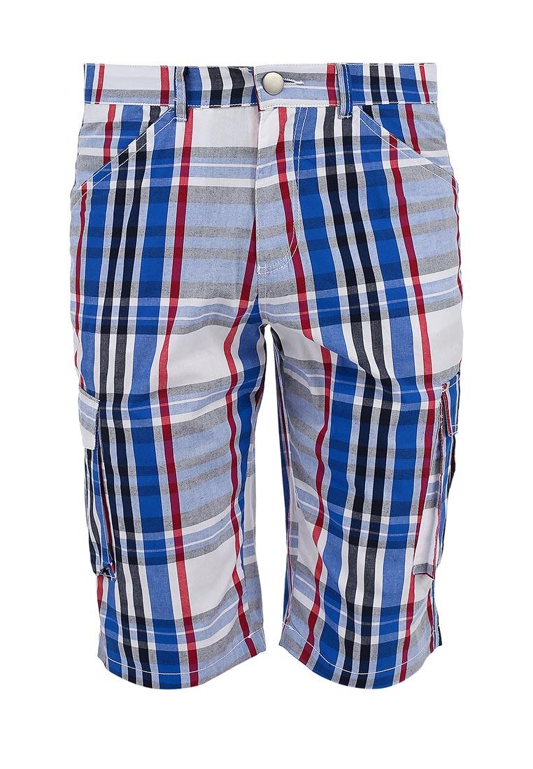 Мужские повседневные шорты Baon (Баон) B824002: изображение 1