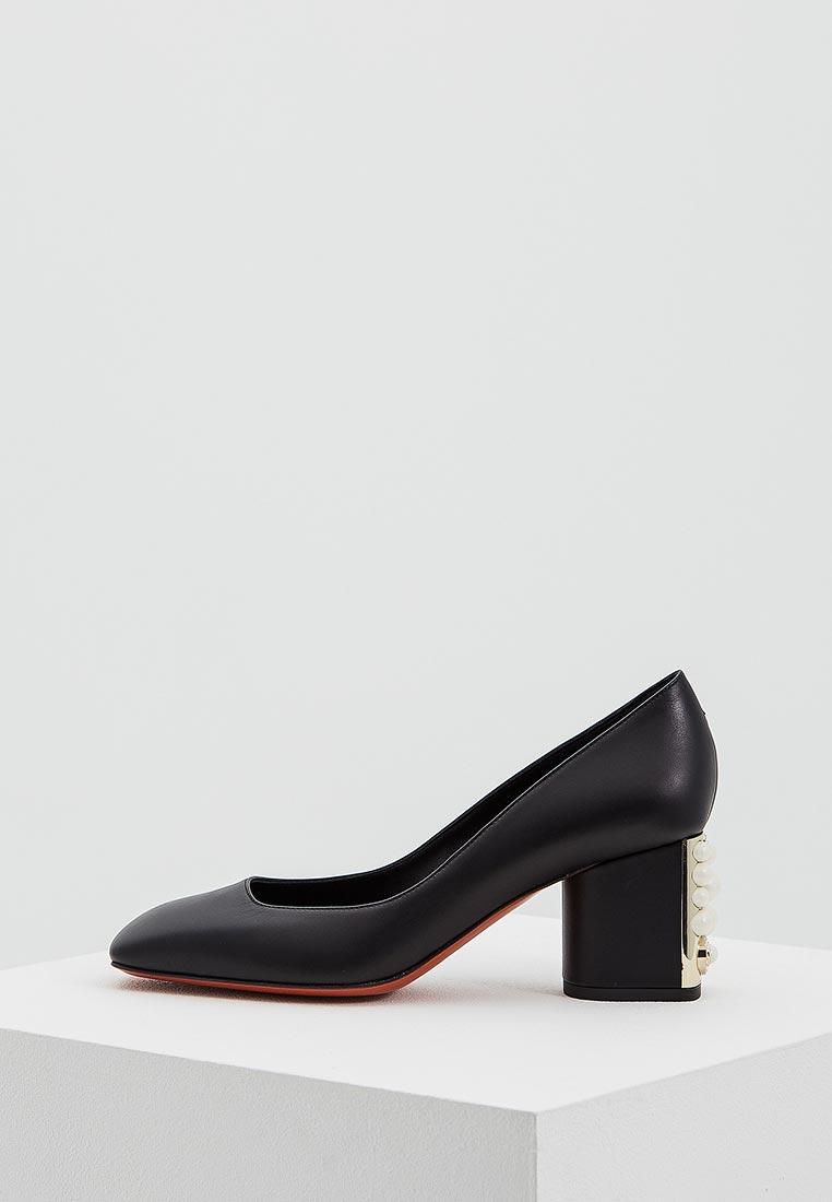 Женские туфли Baldinini (Балдинини) 852501P61QGARO0000
