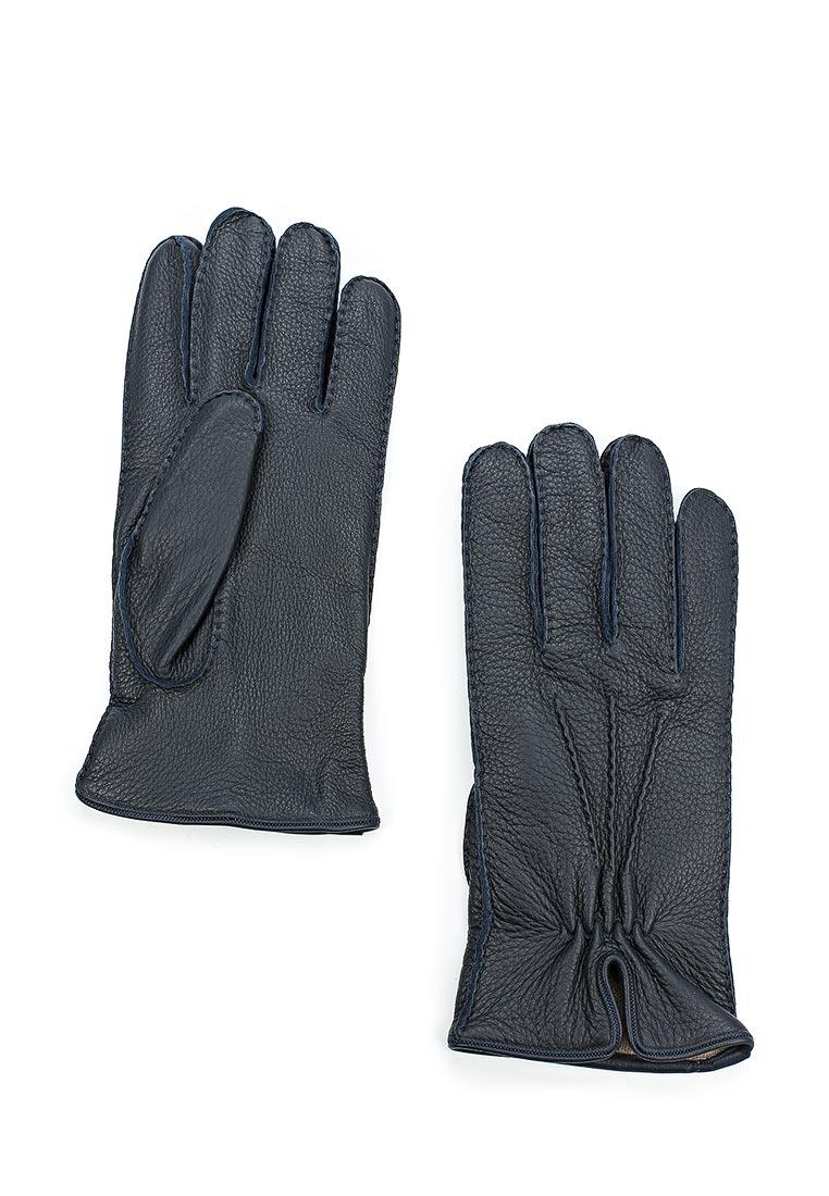 Мужские перчатки Baldinini (Балдинини) 827000CERV10.......