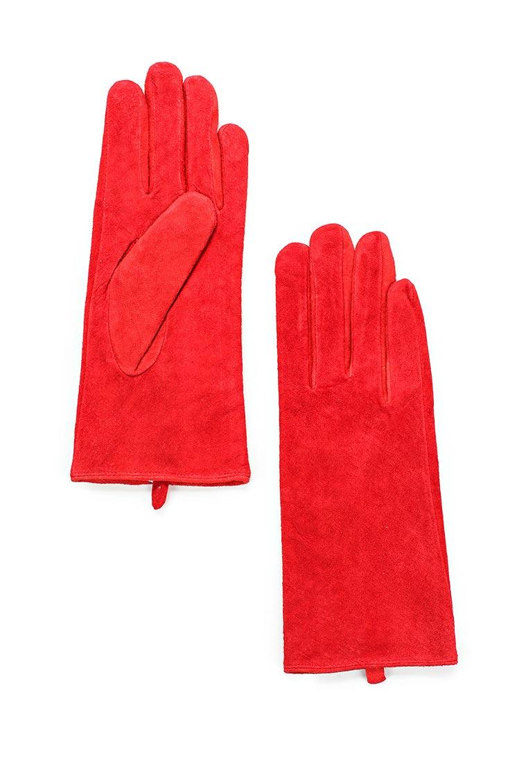 Женские перчатки Befree (Бифри) 1736017006