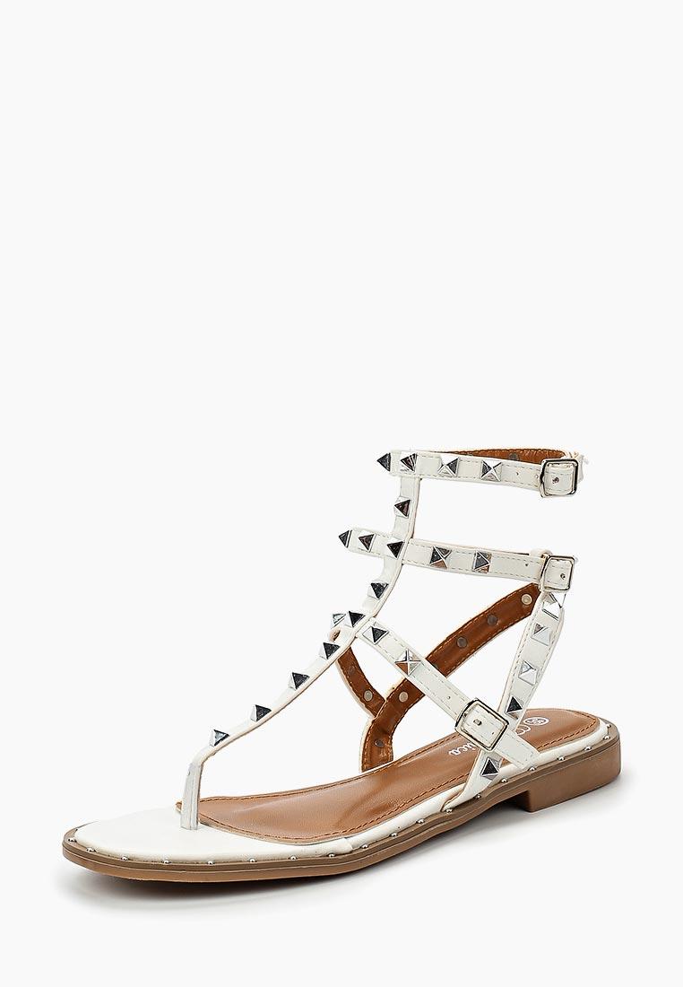 Женские сандалии Bellamica F24-LY8703