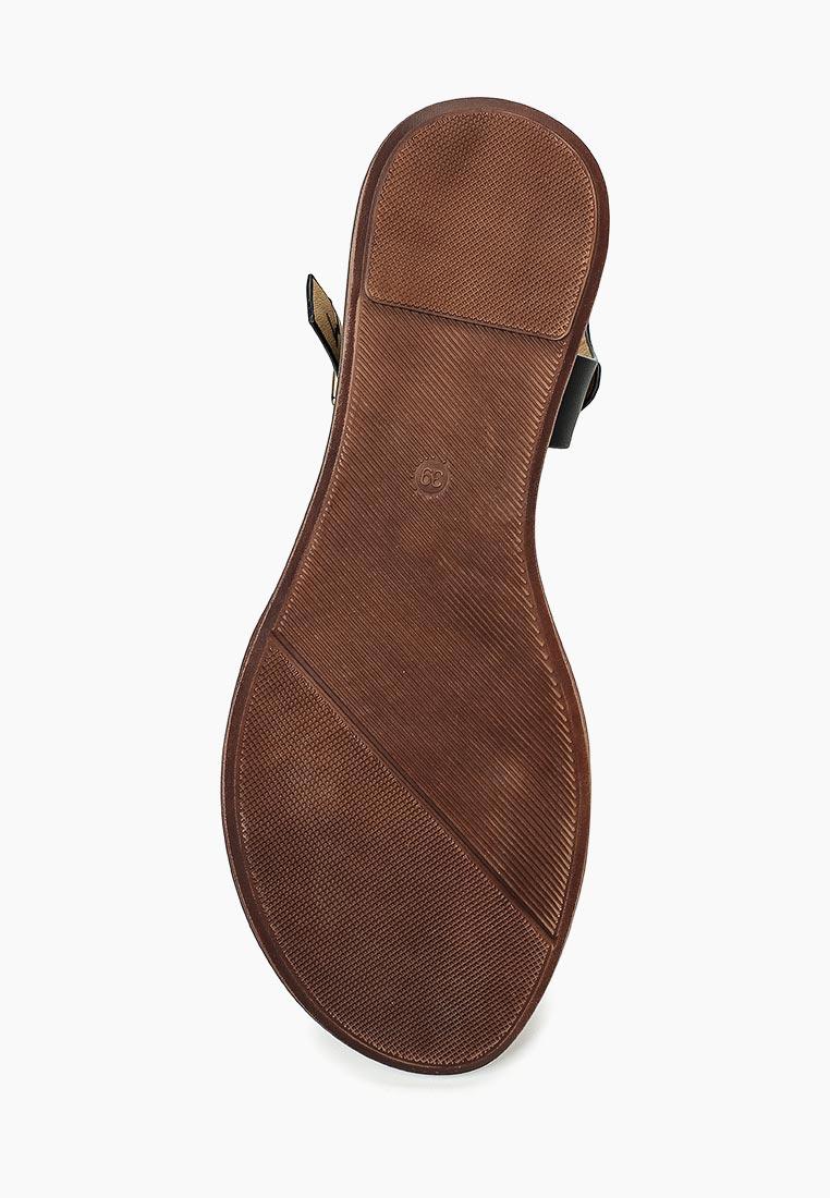 Женские сандалии BelleWomen F52-8607: изображение 3