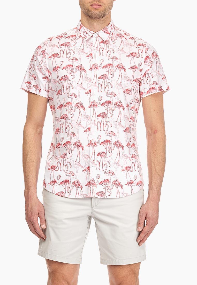 Рубашка с коротким рукавом Burton Menswear London (Бертон Менсвеар Лондон) 22P11MWHT