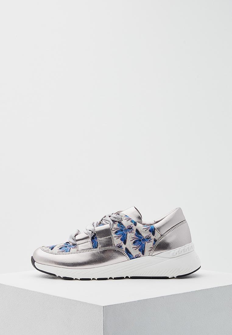 Женские кроссовки Casadei 2J003K0201X387