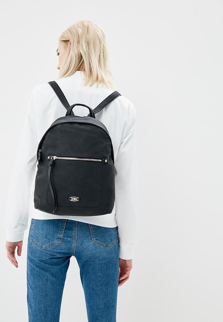 Городской рюкзак David Jones (Дэвид Джонс) 5676А-2_черный