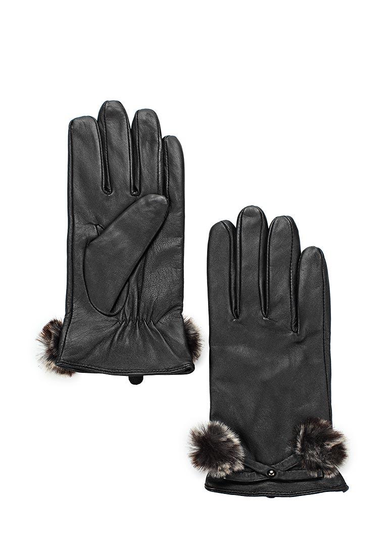 Женские перчатки Dorothy Perkins (Дороти Перкинс) 11222110