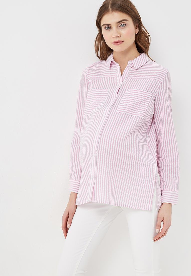 Женские рубашки с длинным рукавом Dorothy Perkins Maternity 17356014