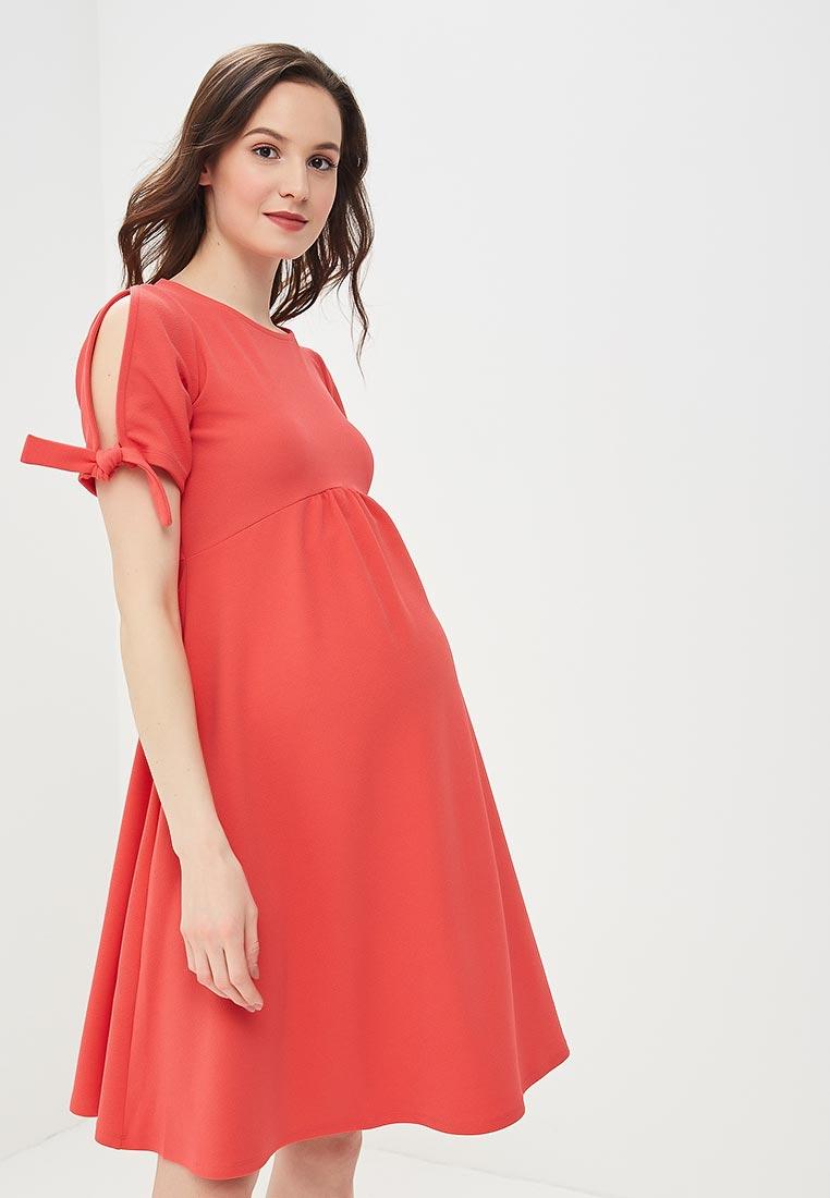 Платье Dorothy Perkins Maternity 17012316