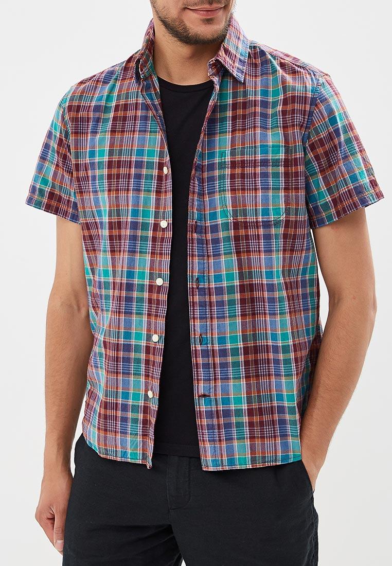 Рубашка с коротким рукавом Gap (ГЭП) 299803