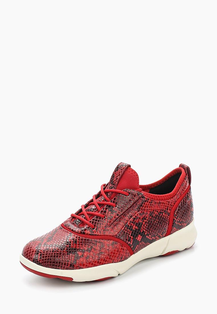 Женские кроссовки Geox D829DA00041C7452