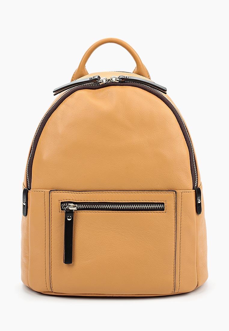 Городской рюкзак Gianni Conti 584205