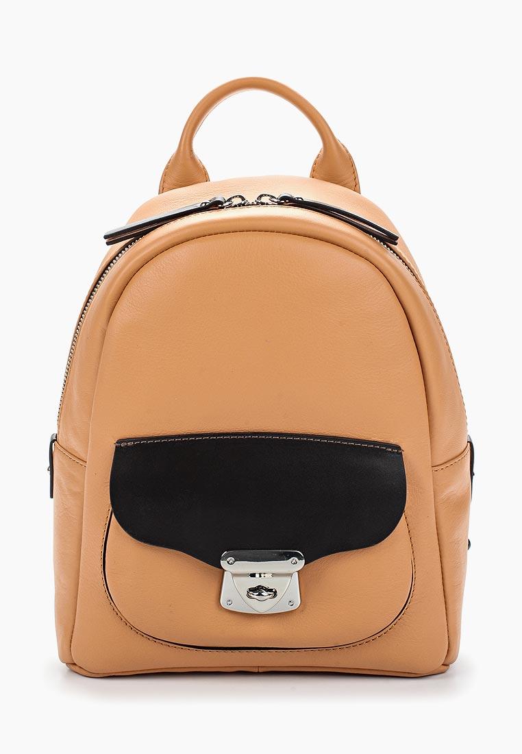 Городской рюкзак Gianni Conti 584274