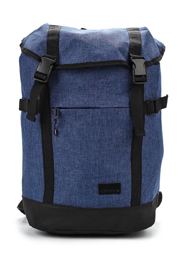 Городской рюкзак Icepeak 595100IV