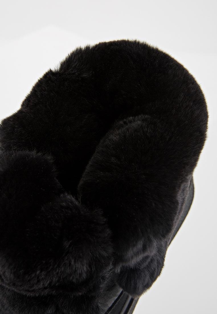 Женские ботинки Jog Dog 15006DR: изображение 5