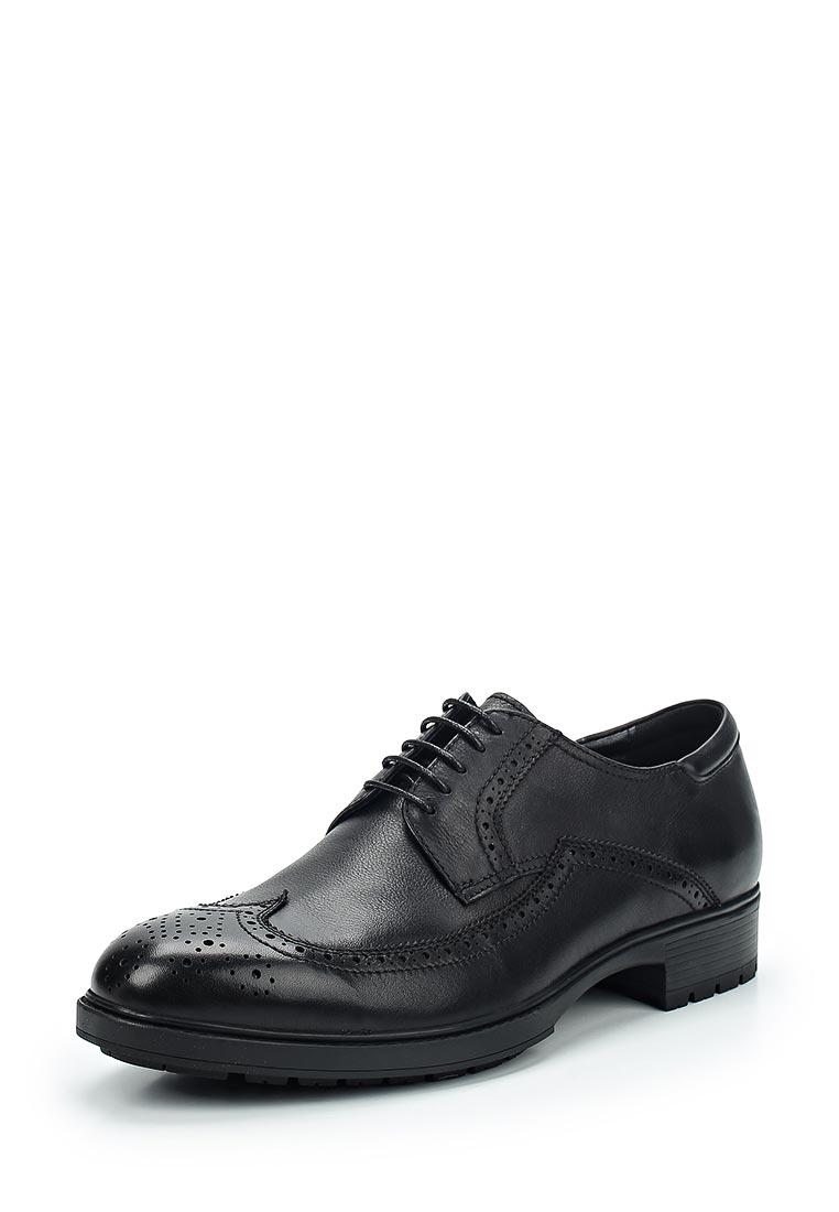 Мужские туфли Just Couture M01G17-1-D77