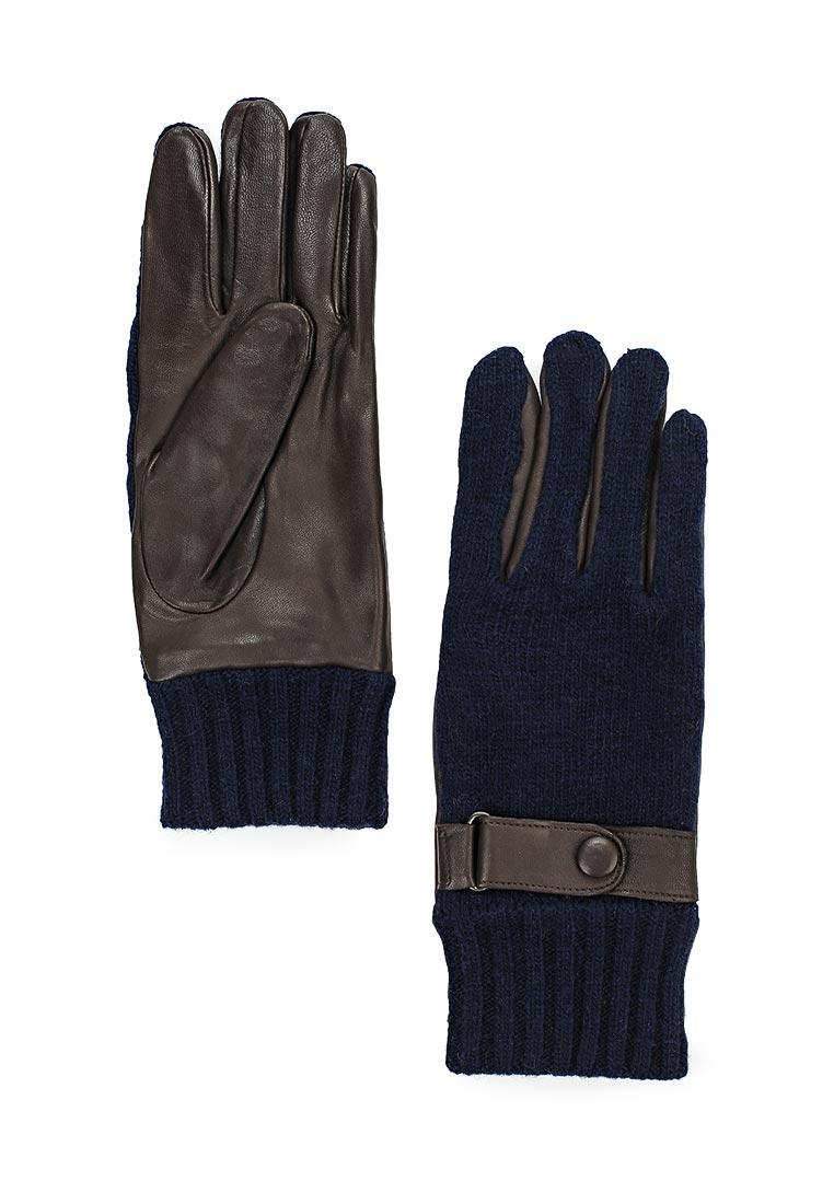 Мужские перчатки Labbra LB-02070M d.brown/navy
