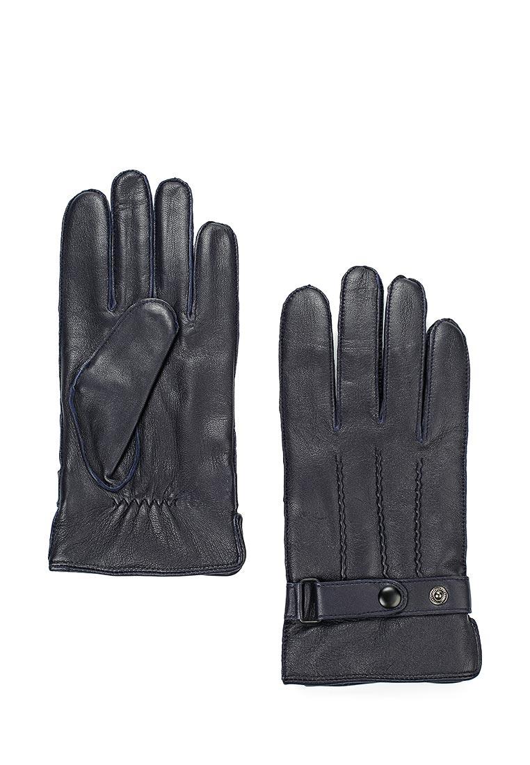 Мужские перчатки Labbra LB-6004 d.blue