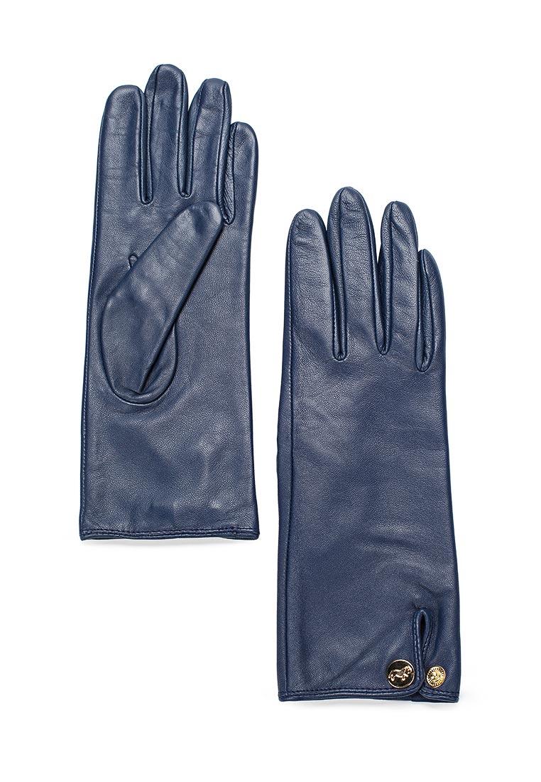 Женские перчатки Labbra LB-4909 blue