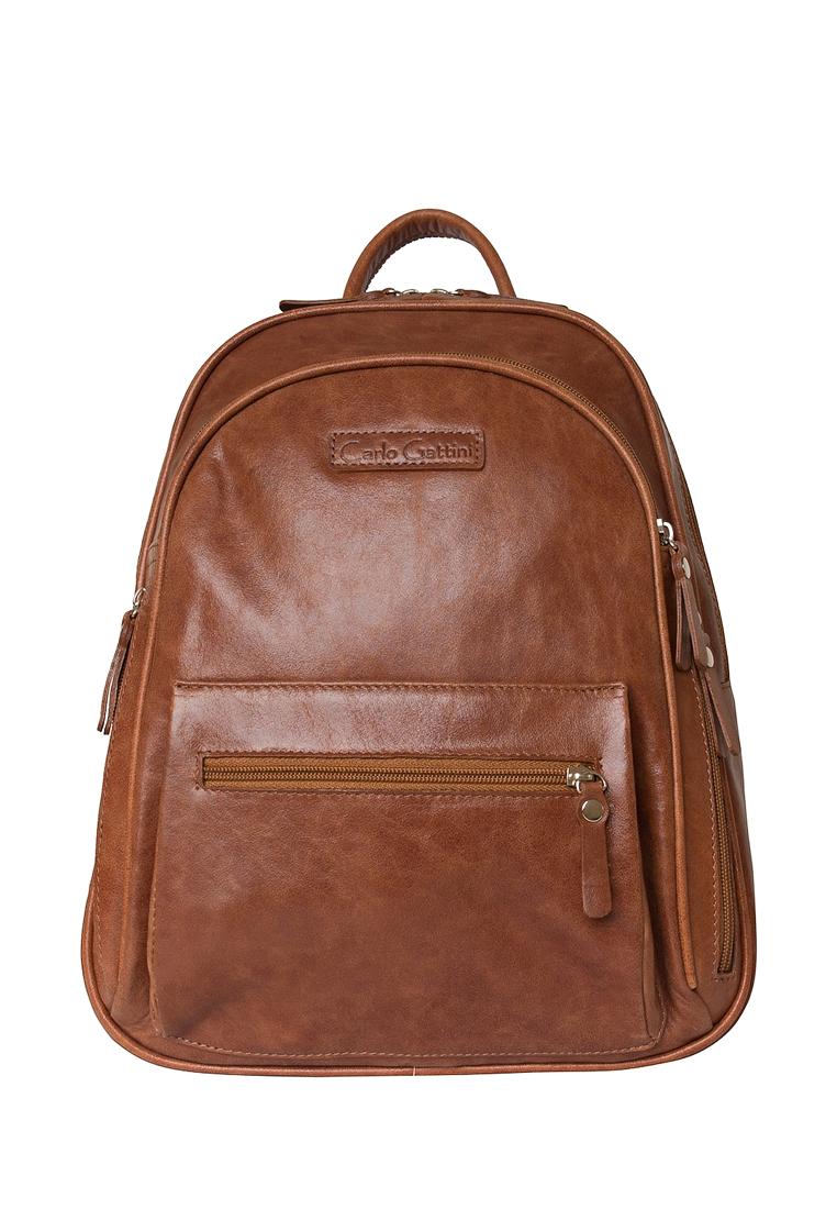 Городской рюкзак Carlo Gattini 3013-22