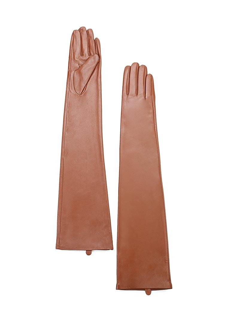 Женские перчатки MAISONQUE 18MGLO01/коньячный, M