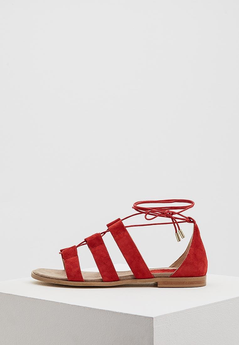 Женские сандалии Pennyblack 55210218