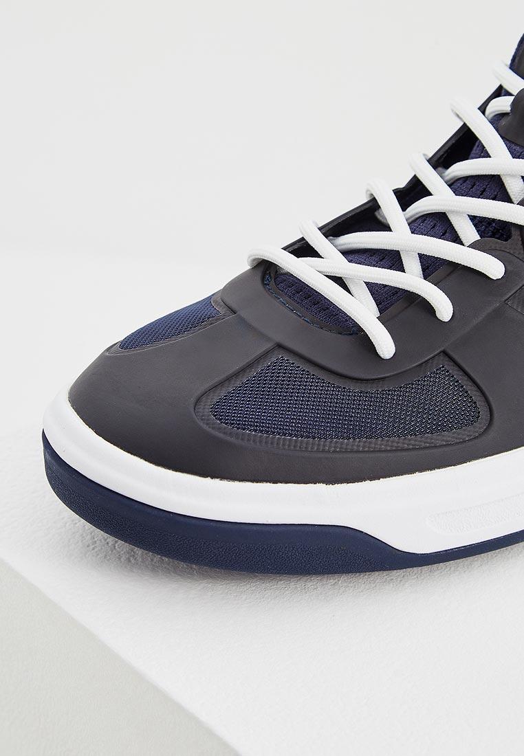 Женские кроссовки Polo Ralph Lauren (Поло Ральф Лорен) 804689717002: изображение 4