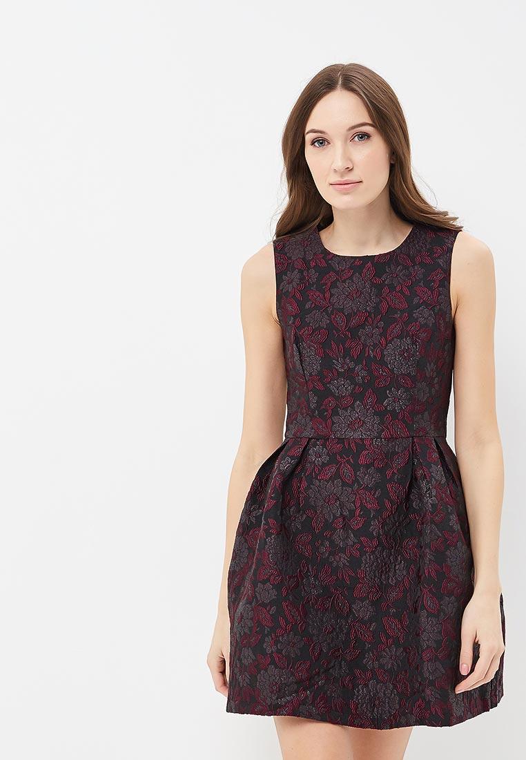 Платье-мини QED London NL1866 B BLACK/WINE