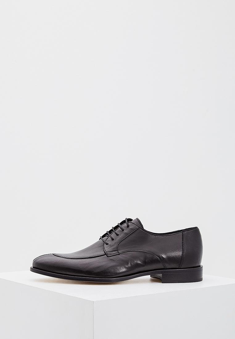 Мужские туфли Roberto Botticelli (Роберто Боттичелли) Prh6239