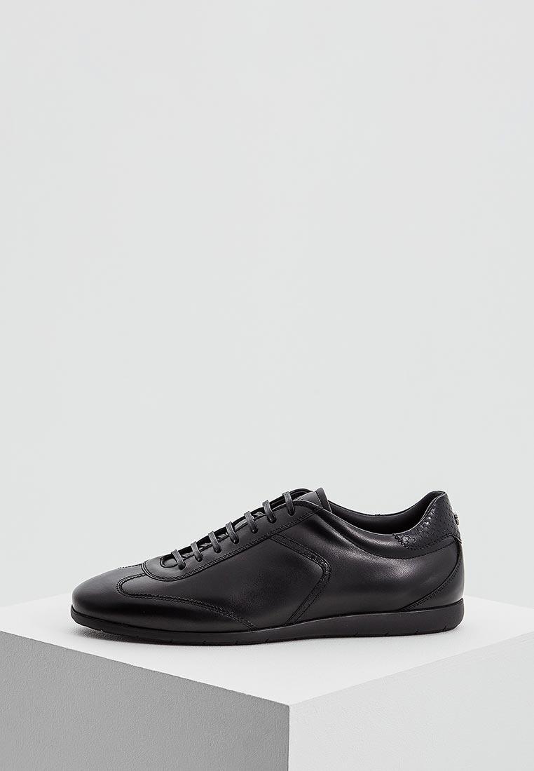 Мужские кроссовки Roberto Cavalli 4296