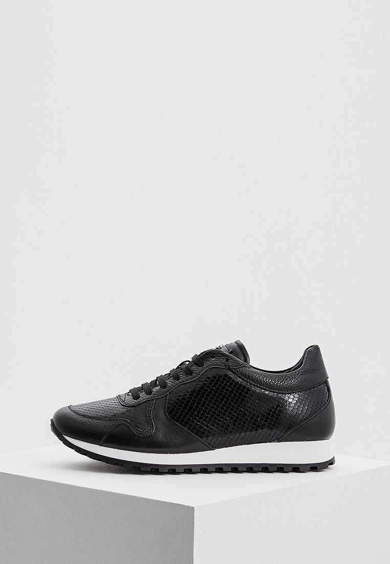 Мужские кроссовки Roberto Cavalli 4277