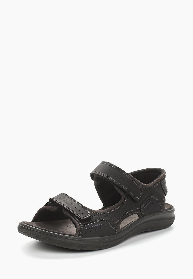 Мужские сандалии SALAMANDER (Саламандер) 31-65903-11