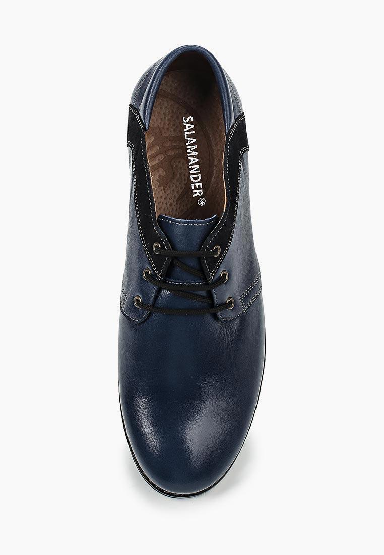 Мужские туфли SALAMANDER (Саламандер) 26087: изображение 4