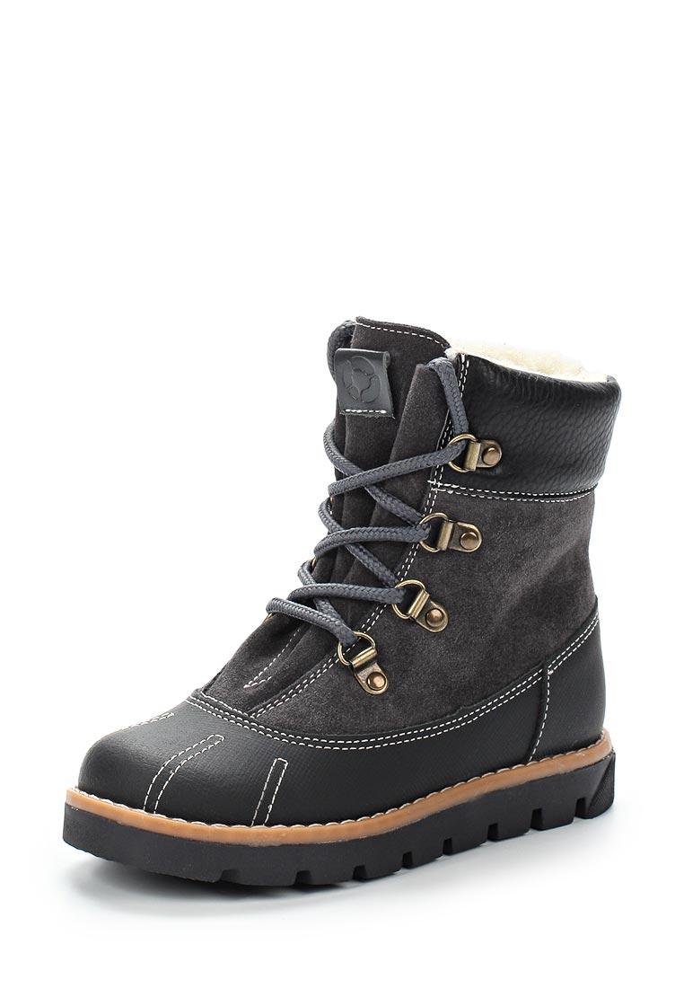 Ботинки для мальчиков TAPiBOO (Тапибу) FT-23007.17-OL12O.01: изображение 1
