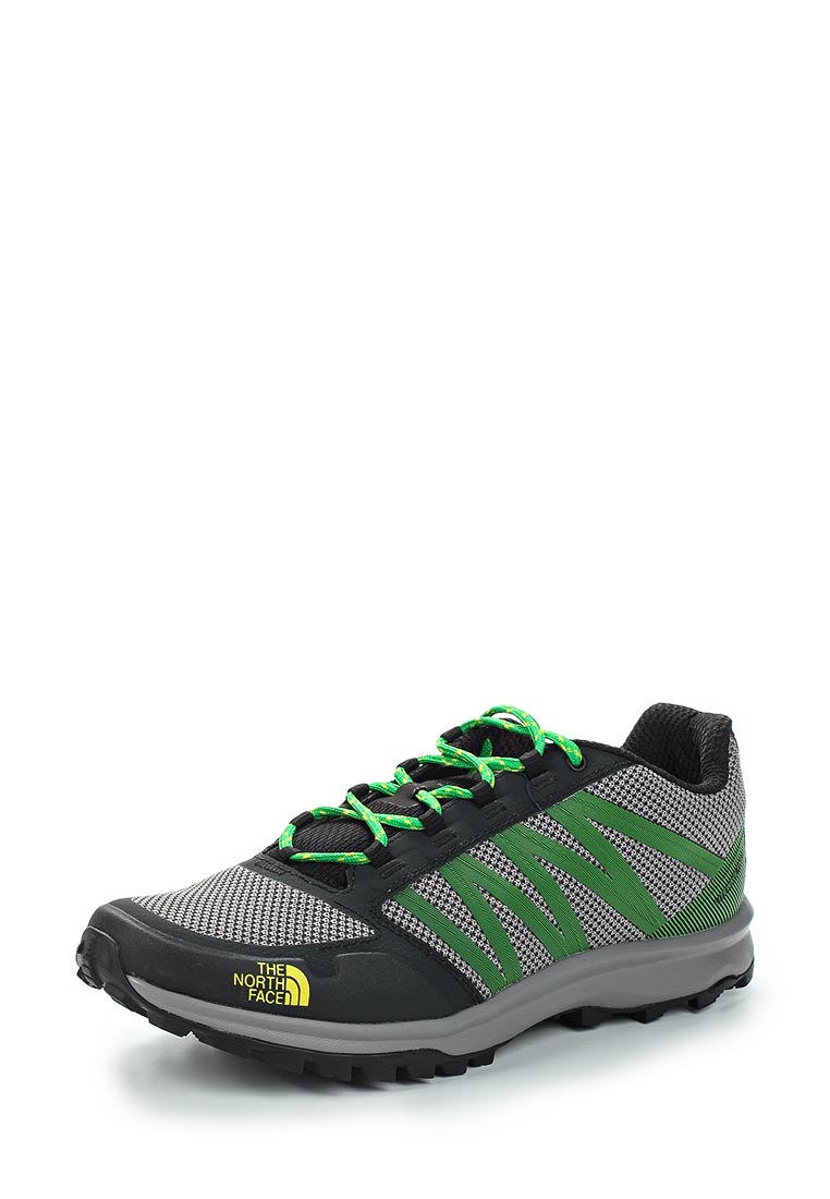 Спортивные мужские ботинки The North Face (Норт Фейс) T93FX63PP