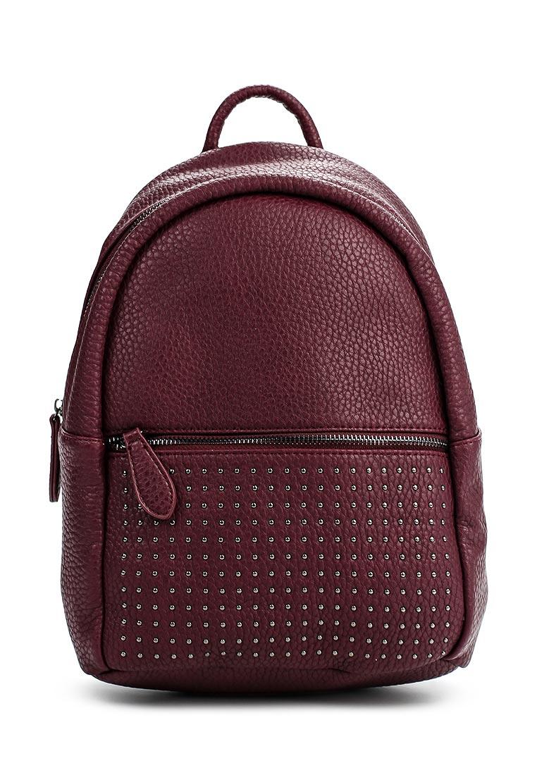 Городской рюкзак Vitacci (Витачи) BL0047