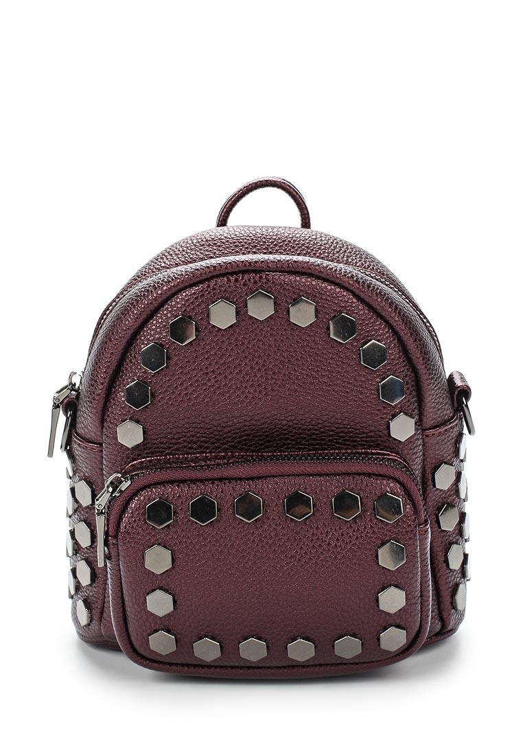 Городской рюкзак Vitacci (Витачи) HG0101