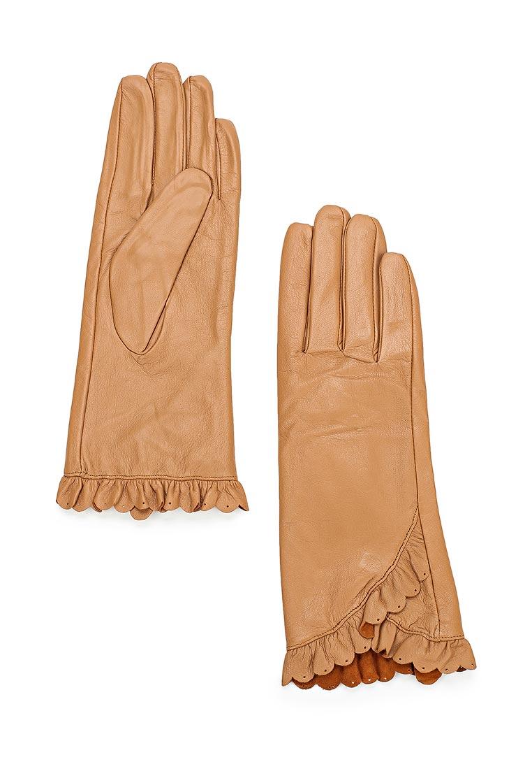 Женские перчатки Vitacci (Витачи) ZF050