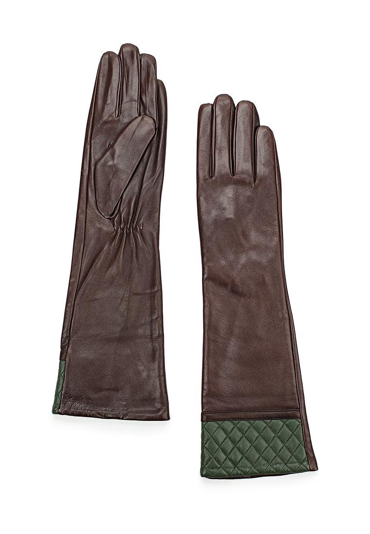 Женские перчатки Vitacci (Витачи) ZF032